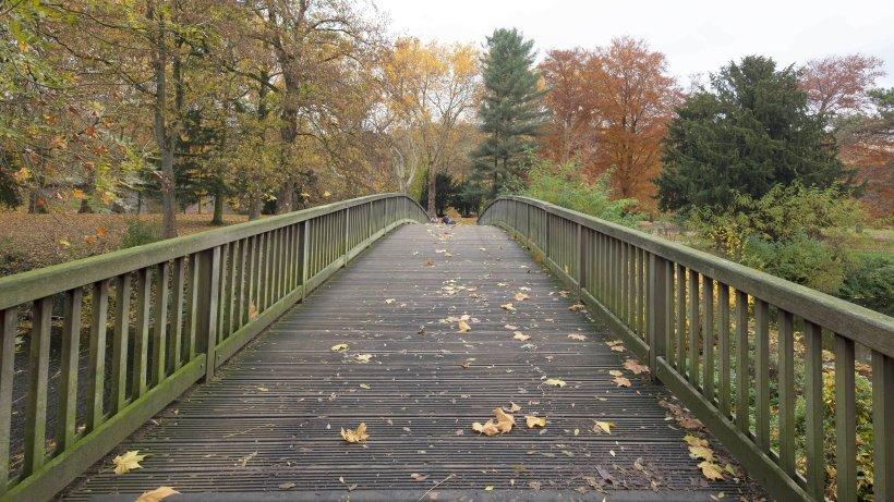 Brehminsel: Brehminsel in Werden soll eine neue Brücke bekommen