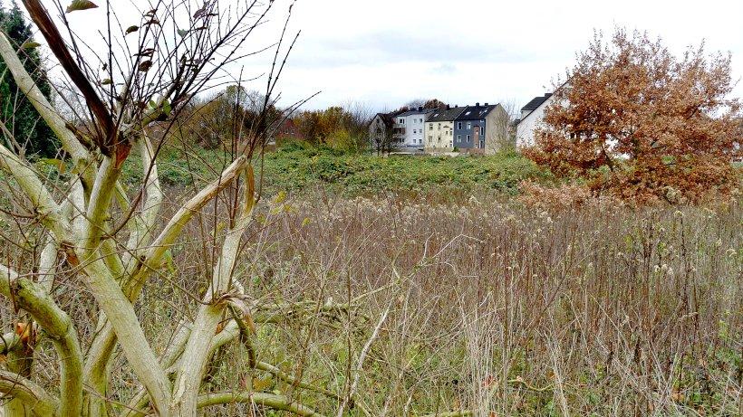 Holsterhausen-Neuer-Herner-Park-soll-im-Fr-hjahr-2022-fertig-sein