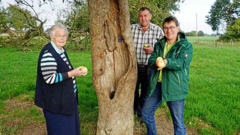 Uedem: Auf der Suche nach seltenen Obstsorten in Keppeln - WR